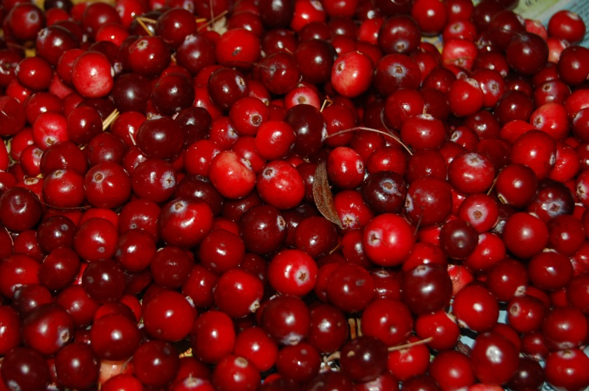 cranberries are keto-friendly